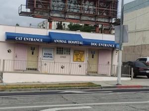 GLAW 2012: Animal Hospital